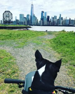 Taking a ride with my boy  enjoying the viewshellip